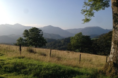 One of the views from the estate (photo, summer)