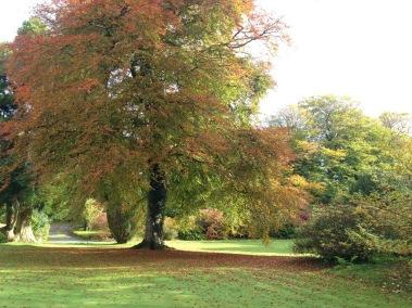 Autumn approaches