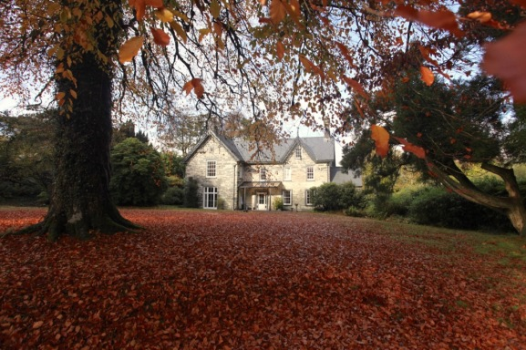 Blaenddol Estate in the Autumn